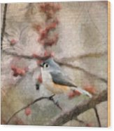 Tufted Titmouse 2 Wood Print