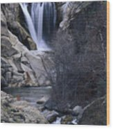 Tule River Wood Print