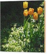 Tulip #1 Wood Print