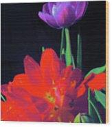 Tulip 15 Wood Print
