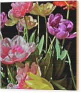 Tulip 8 Wood Print