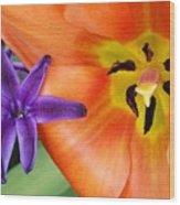 Tulip And Company Wood Print