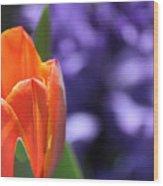 Tulip And Hyacinth Wood Print