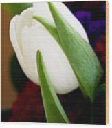 Tulip Arrangement 4 Wood Print