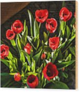 Tulip Beauties Wood Print