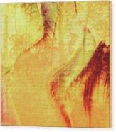 Tulip Dawn-2 Wood Print