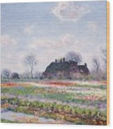 Tulip Fields At Sassenheim Wood Print