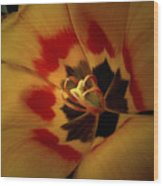 Tulip Flair Wood Print
