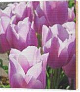 Tulip Garden Flowers Purple Lavender Pastel Art Baslee Troutman Wood Print