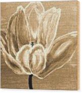 Tulip In Brown Tones Wood Print