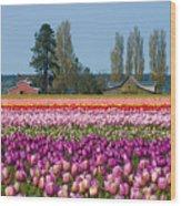 Tulip Landscape Wood Print