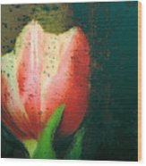 Tulip Of Love Wood Print