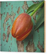 Tulip On Old Green Table Wood Print