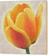 Tulip Orange Wood Print