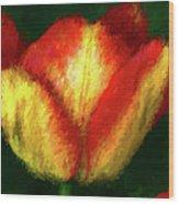 Tulip Painting Wood Print