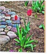 Tulip Rock Garden Wood Print