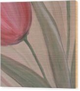 Tulip Series 2 Wood Print