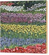 Tulip Tme Wood Print
