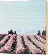 Tulip Town 10 Wood Print