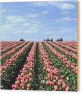 Tulip Town 12 Wood Print