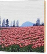 Tulip Town 3 Wood Print