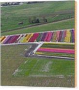 Tulip Town Aerial Wood Print