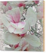 Tulip Tree Blossoms - Magnolia Liliiflora Wood Print