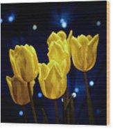 Tulip Twinkle Wood Print