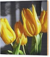 Tulipfest 2 Wood Print