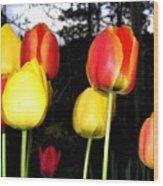 Tulipfest 9 Wood Print