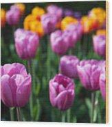 Tulips 14 Wood Print