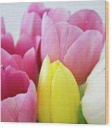 Tulips #3 Wood Print
