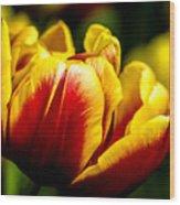 Tulips 7 Wood Print