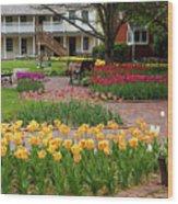 Tulips Abound Wood Print