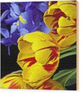 Tulips And Iris Wood Print