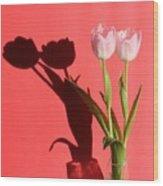 Tulips Casting Shadows Wood Print