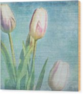 Tulips Day Wood Print