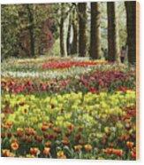 Tulips Everywhere 1 Wood Print