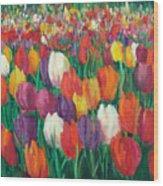 Tulips Everywhere Wood Print
