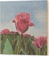 Tulips Festival Ottawa Wood Print