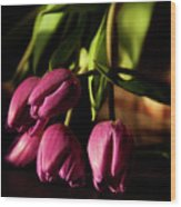 Tulips In Evening Sunlight Wood Print