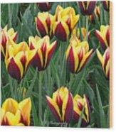Tulips In The Garden Wood Print