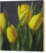 Tulips In The Kitchen Wood Print