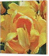 Tulips In Yellow Too Wood Print