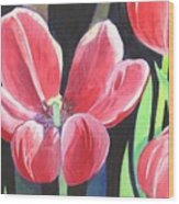 Tulips On Black Wood Print