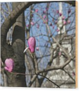 Tulips On Trees  Wood Print
