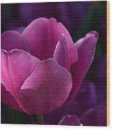 Tulips Purple Layers Wood Print