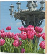 Tulips With Bartholdi Fountain Wood Print