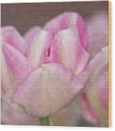 Tulips With Texture Wood Print