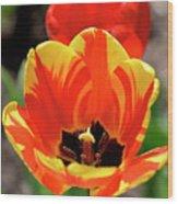 Tulips Yellow Red Wood Print